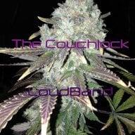 Thecouchlock