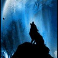 WolfieLee