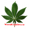 weedcourier